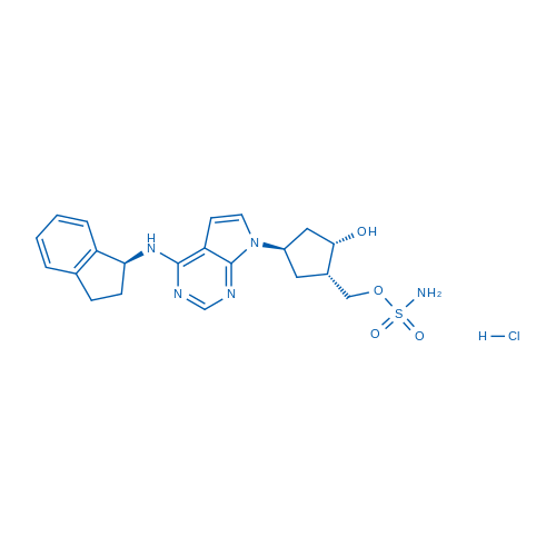 MLN4924 hydrochloride