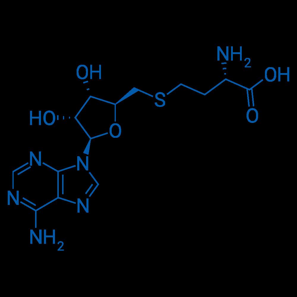 S-Adenosylhomocysteine