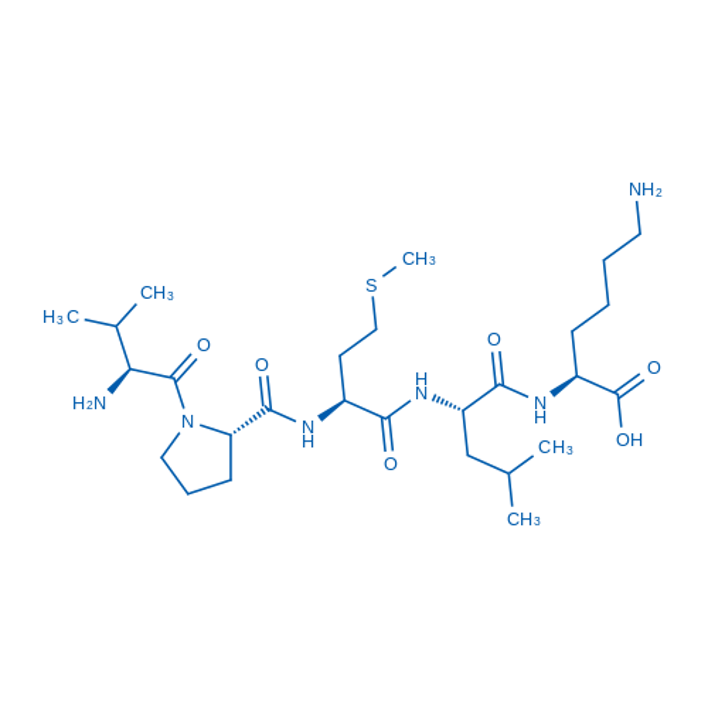 Bax inhibitor peptide V5