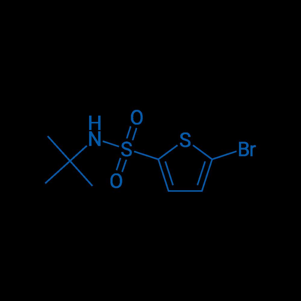 N-tert-Butyl 5-bromo-2-thiophenesulfonamide
