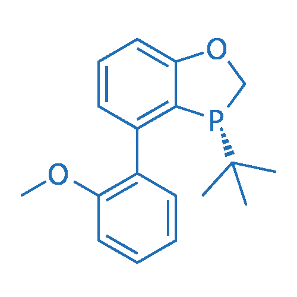 (R)-3-(tert-butyl)-4-(2-methoxyphenyl)-2,3-dihydrobenzo[d][1,3]oxaphosphole