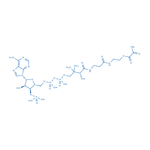 2-((2-(3-((2R)-4-(((((((2R,3S,4R,5R)-5-(6-Amino-9H-purin-9-yl)-4-hydroxy-3-(phosphonooxy)tetrahydrofuran-2-yl)methoxy)(hydroxy)phosphoryl)oxy)(hydroxy)phosphoryl)oxy)-2-hydroxy-3,3-dimethylbutanamido)propanamido)ethyl)thio)-2-oxoacetic acid