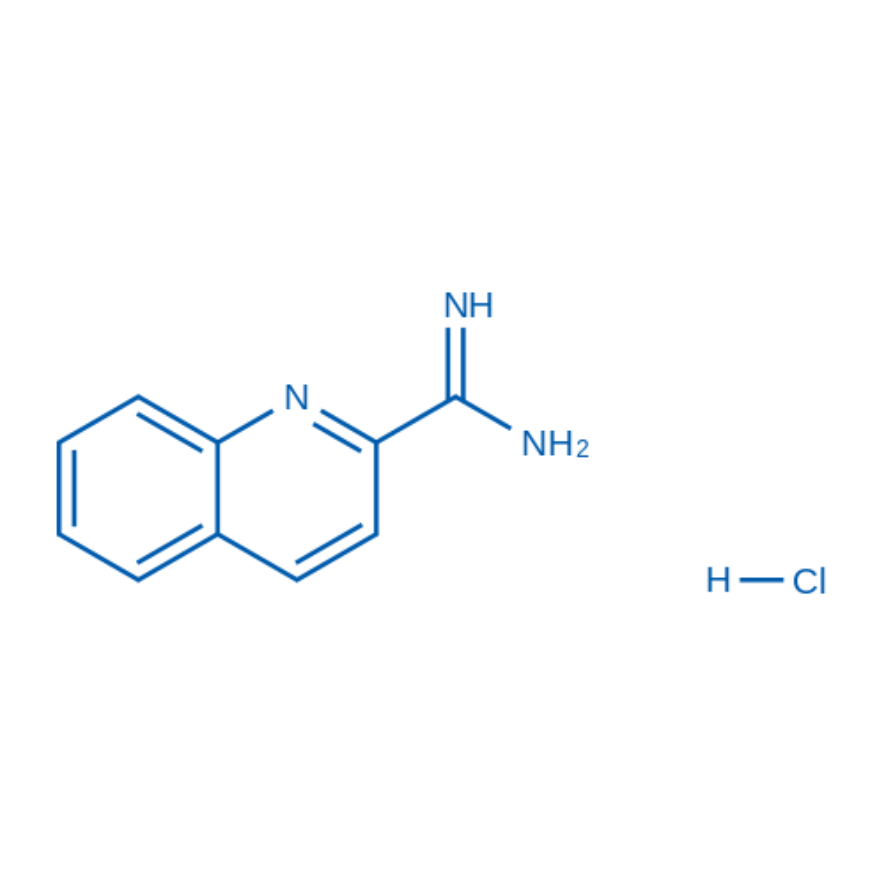 Quinoline-2-carboximidamide hydrochloride