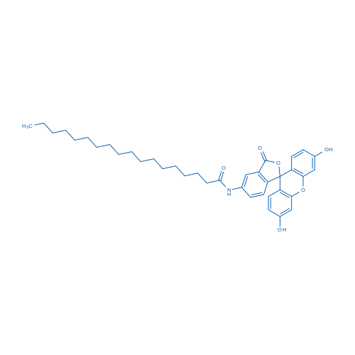 N-(3',6'-Dihydroxy-3-oxo-3H-spiro[isobenzofuran-1,9'-xanthen]-5-yl)stearamide
