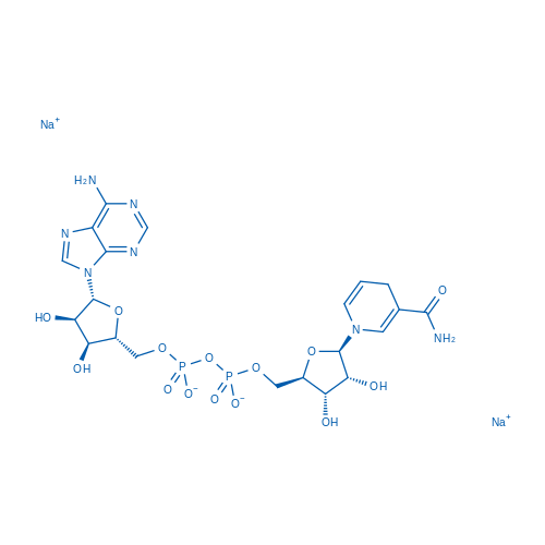 beta-Nicotinamide adenine dinucleotide disodium salt