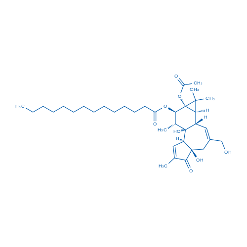 Phorbol 12-myristate 13-acetate
